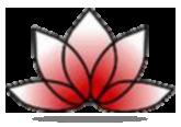 linge-zendo-enso-teken-paulo-houben-zen-meditatie-oefening